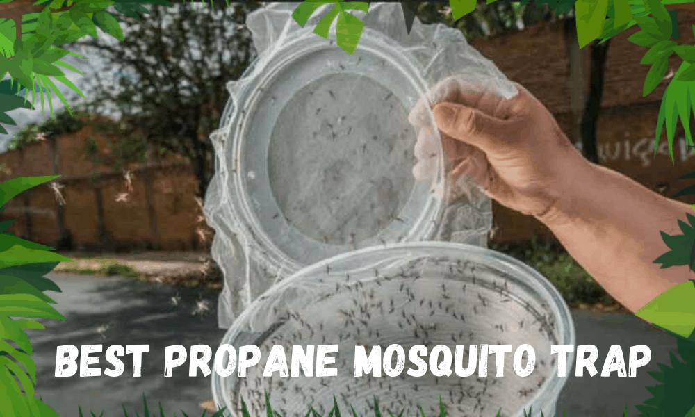 Best Propane Mosquito Trap