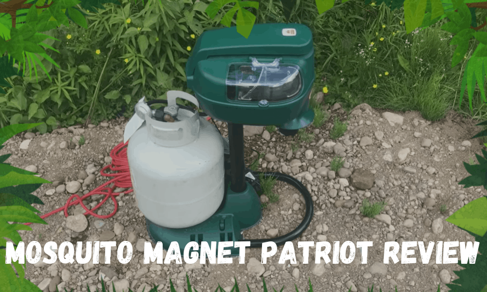 Mosquito Magnet Patriot Review