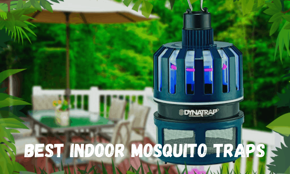 Best Indoor Mosquito Traps