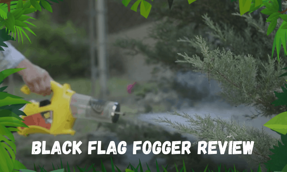 Black Flag FOGGER REVIEW