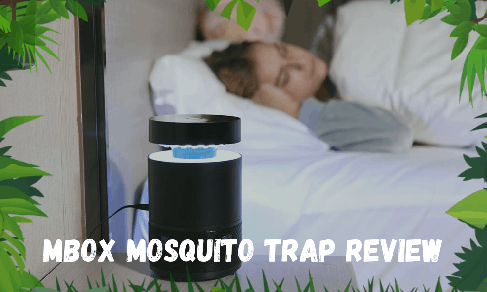 MBOX Mosquito Trap Review