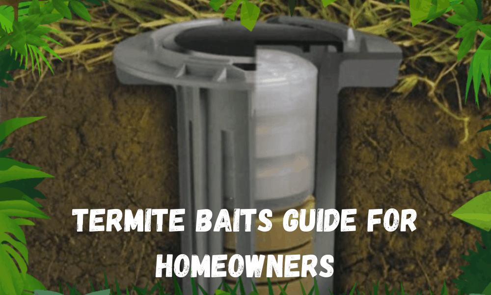 Termite Baits Guide for Homeowners