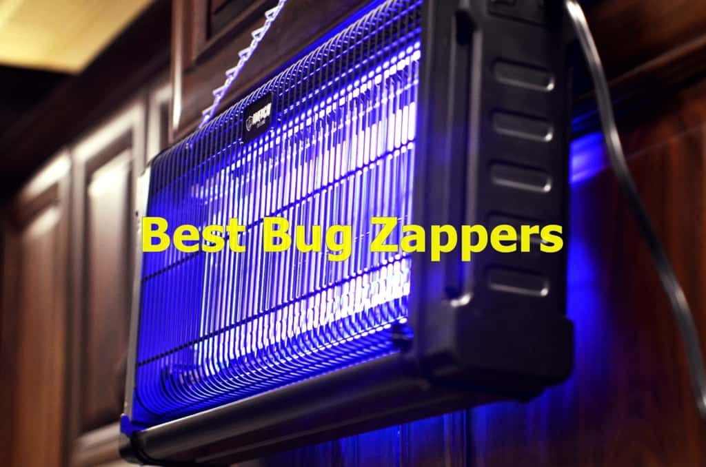 The Best Bug Zappers to Buy in 2019 | Insect Hobbyist