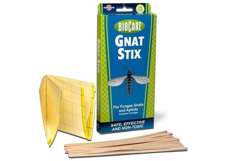 BioCare Superior Gnat Stix