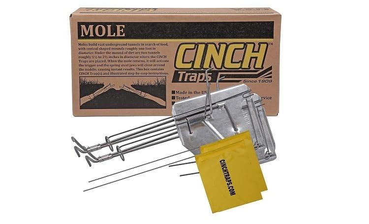 Cinch Mole Trap