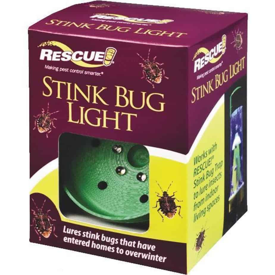 how-to-kill-stink-bugs