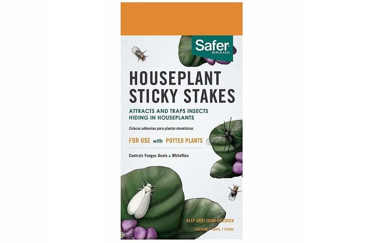 Safer Brand insect trap