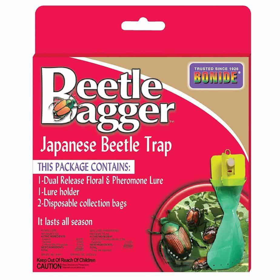 japanese-beetle-trap