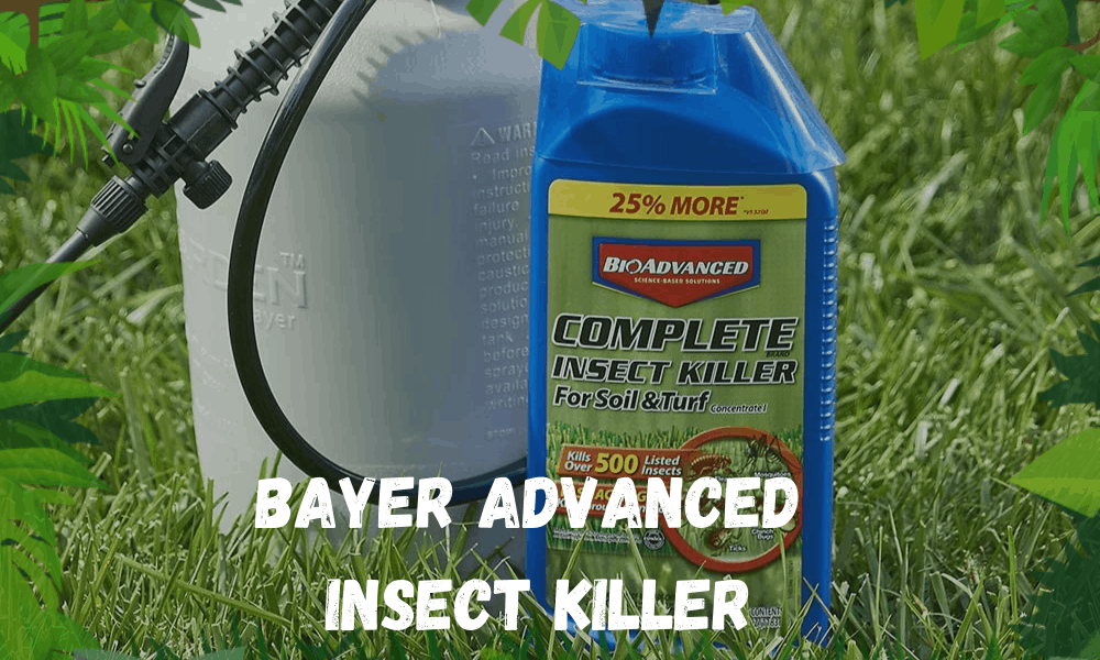 Bayer Advanced Insect Killer