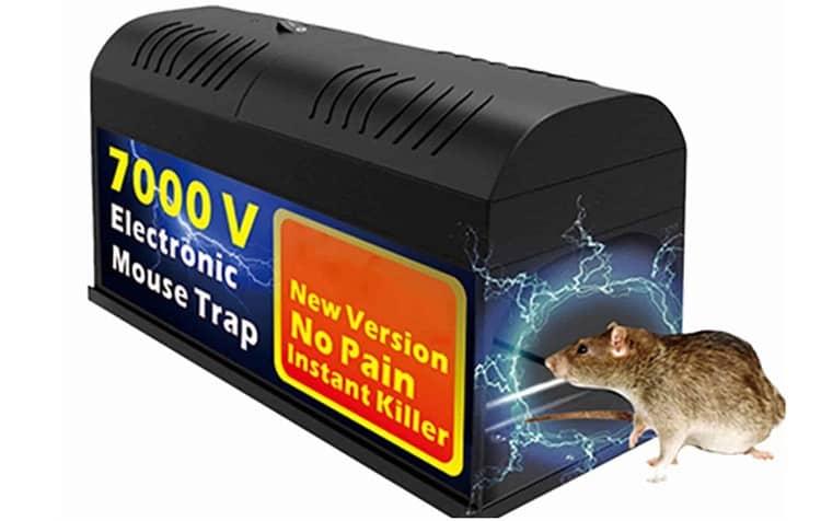 Big-Fun Electronic Defense Box