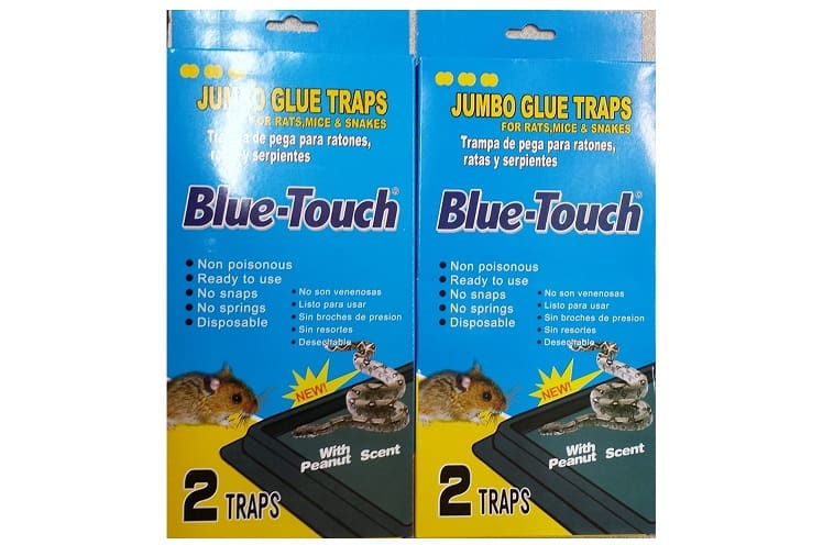 Blue-Touch Jumbo Trap