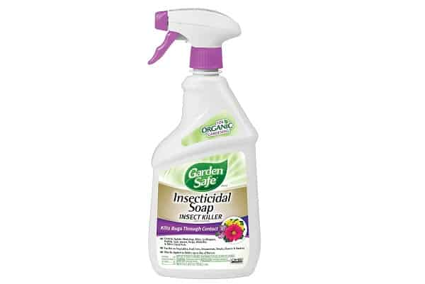 Garden Safe Soap Insect Killer